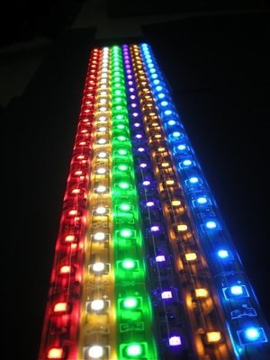 12 Inch LED Strips