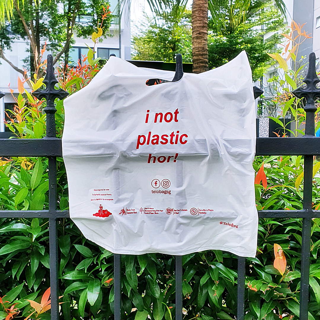 TeloBag Singapore Edition Oval Handle Carrier Bag