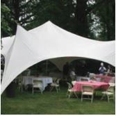 20' x 20' Eureka Capri Party Canopy Tent