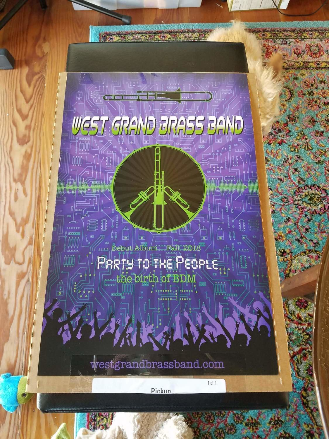 Party to the People Poster