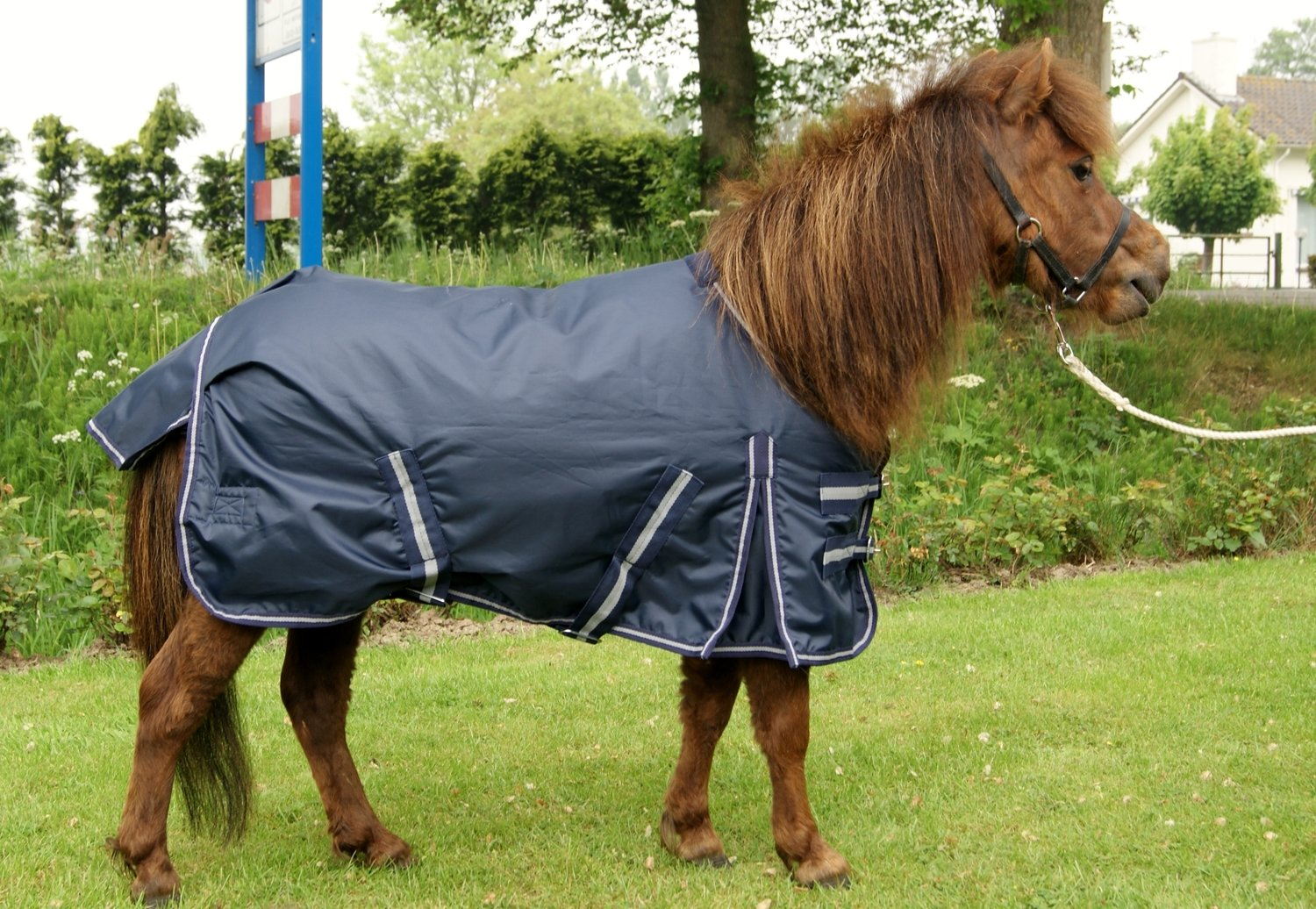 Outdoordecke Pony