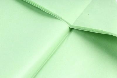 Бумага тишью Салатовая 50х66 см (10 листов)