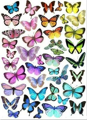 Печать на съедобной бумаге. Бабочки №1
