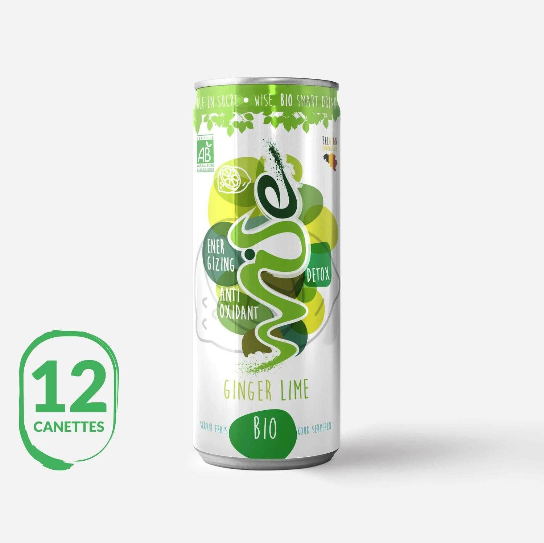 Wise Ginger Lemon : 2 x 6 packs BIO 100%
