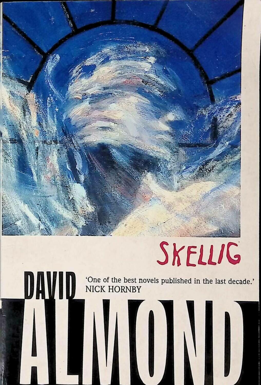 Skellig; David Almond