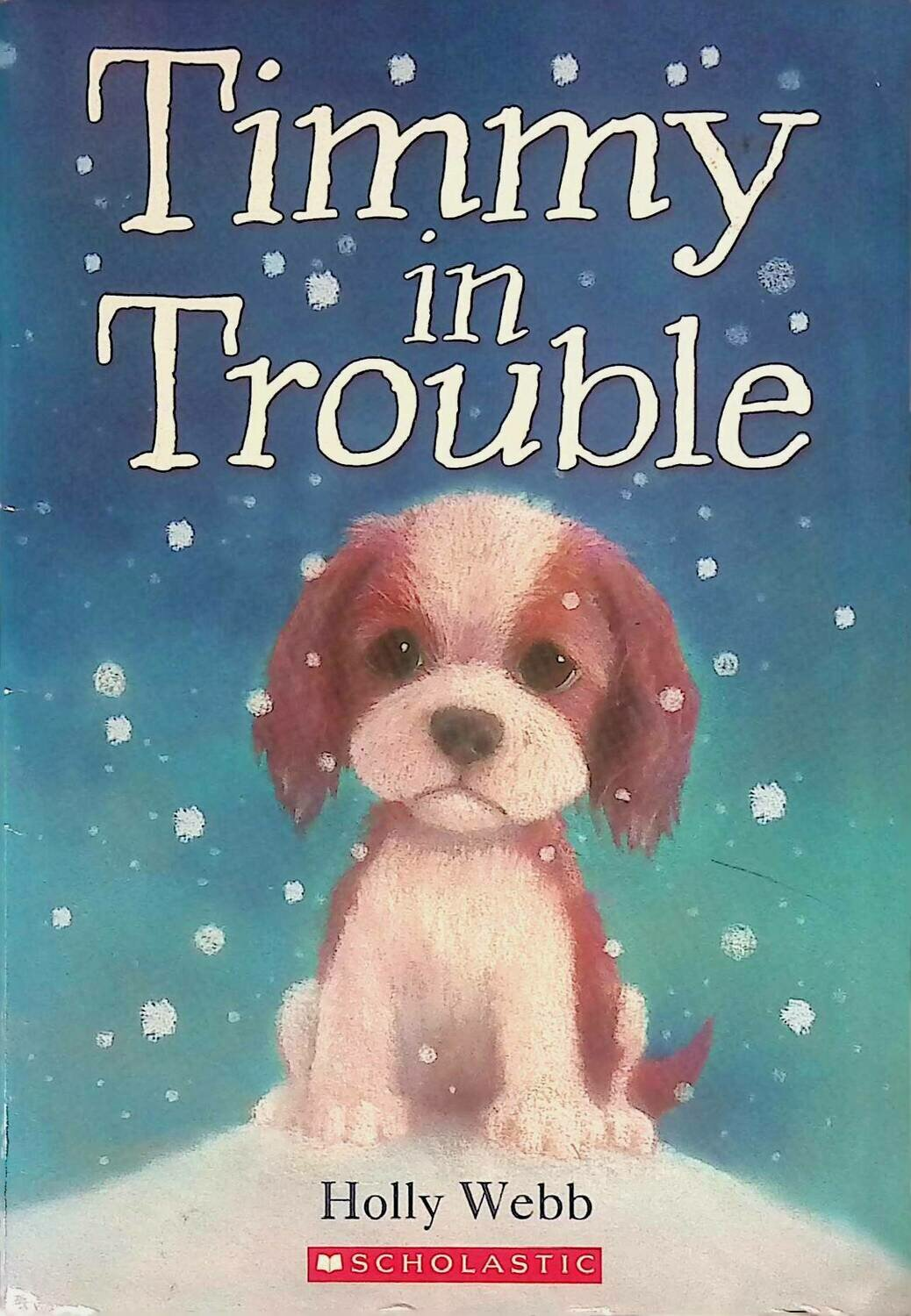 Timmy in Trouble; Holly Webb