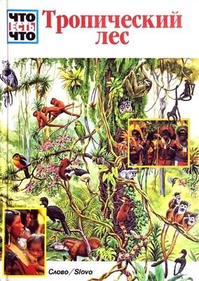 Тропический лес; Андреа Мертини