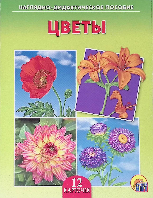 Рыжий Кот Обучающие карточки Цветы; Отсутствует