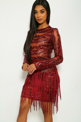 Sequin/Fringed Party Dress