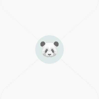 Stickers de naissance adorable panda pour garçon