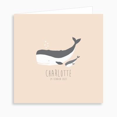 Faire-part de naissance petite baleine dépliant 4 pages