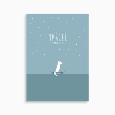 Faire-part de naissance les petits skateurs (carte postale)