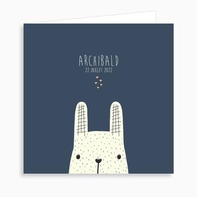 Faire-part de naissance petit lapin jouant à cache-cache (dépliant 4 pages)
