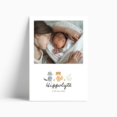 Faire-part de naissance Littlewood (photo)
