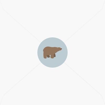 Stickers de naissance ours brun dans la forêt