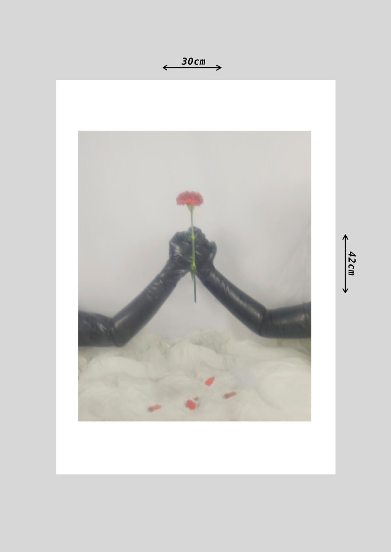"""Print """"La Niebla"""""""