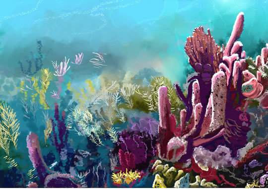Crawl Cay Watercolor Print