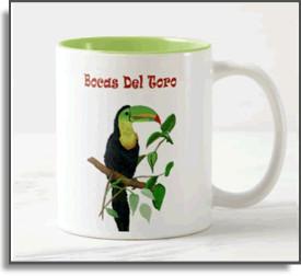 Rainforest Toucan Mug