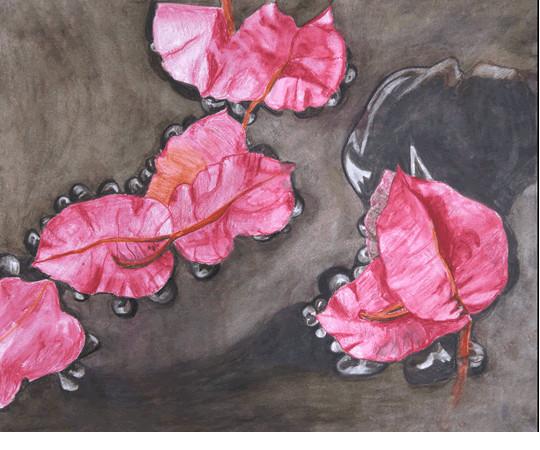 Petals In Water  Watercolor Print