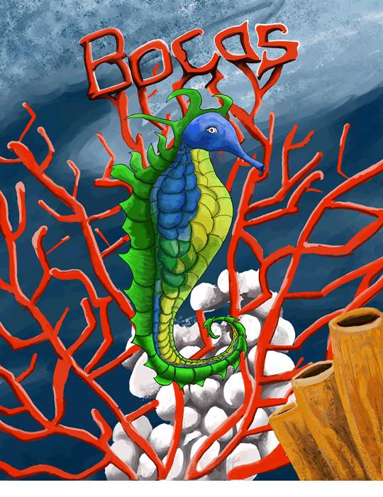Seahorse Bocas Del Toro  Print