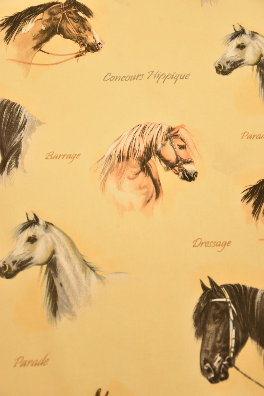 Paarden Welsh