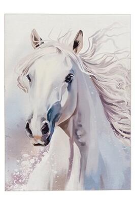 Oregano Tok237 White Beauty