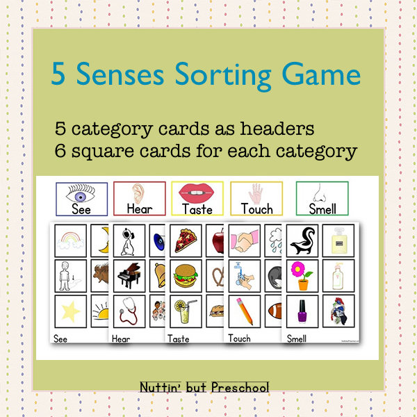 5 Senses Sorting Game
