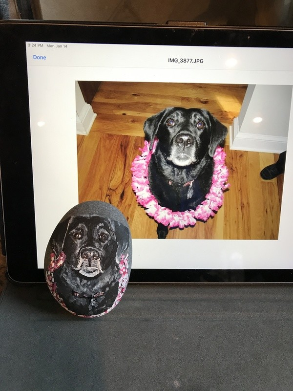 Personalized Pet Rock Portraits