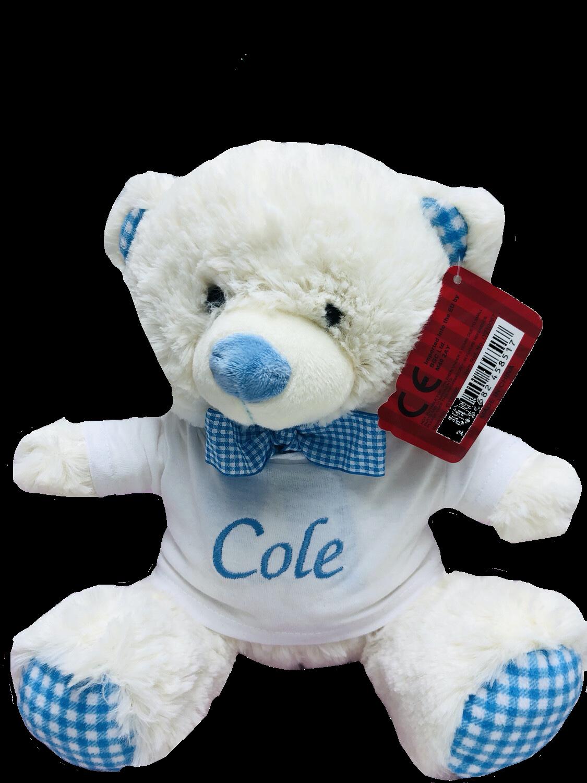 Small Blue gingham teddy bear