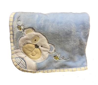Blue Teddy and bee Blanket