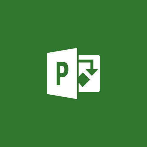 Microsoft Project Standard 2019 (1 User Licence, Download) 076-05785