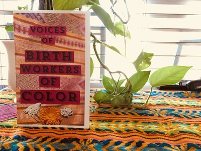 Voices of Birth Workers of Color