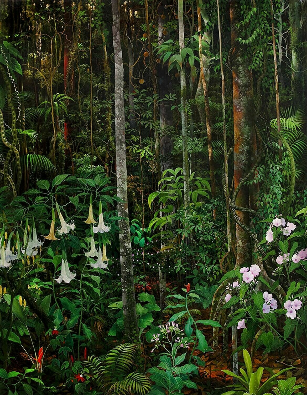 Anderson Debernardi - Master-Healing- Plants