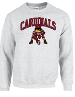 Youth Gildan Crewneck Football Cardinal