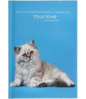 "Блокнот А6 48л клетка PROF PRESS ""Your love"" облож.7БЦ 48-4596"