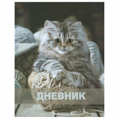 """Дневник школьный 1-11 классы BRAUBERG """"Котёнок"""" твердая обложка 104962"""