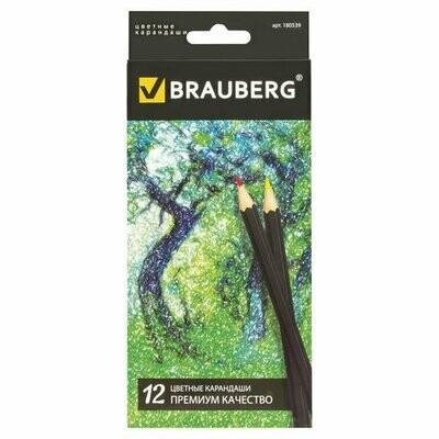 Карандаши 12 цветов BRAUBERG