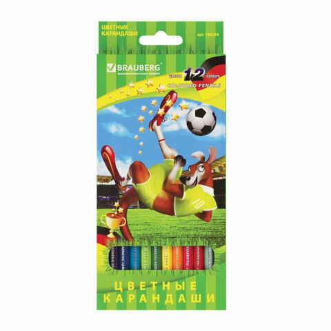 """Карандаши 12 цветов BRAUBERG """"Football match"""" 180534"""