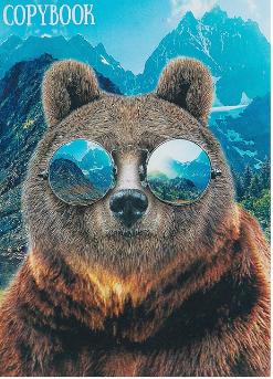 """Тетрадь 48л клетка А4 CALLIGRATA """"Медведь и горы"""" 4180601"""