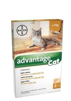 ADVANTAGE CAT