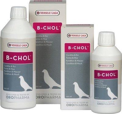 B-CHOL BIOCHOL