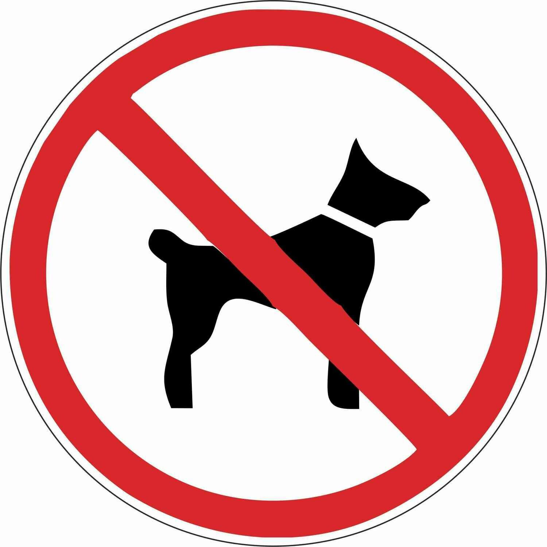 Наклейка Вход с собаками запрещен