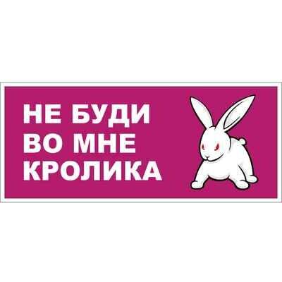 Наклейка Не буди кролика