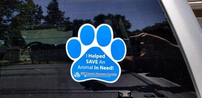 I Helped Save an Animal in Need
