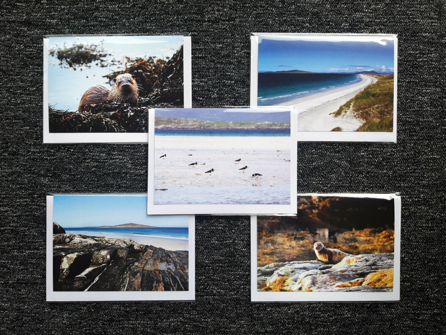 Greeting cards - pack of 5 sea