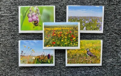 Floral greeting cards - mixed pack of 5