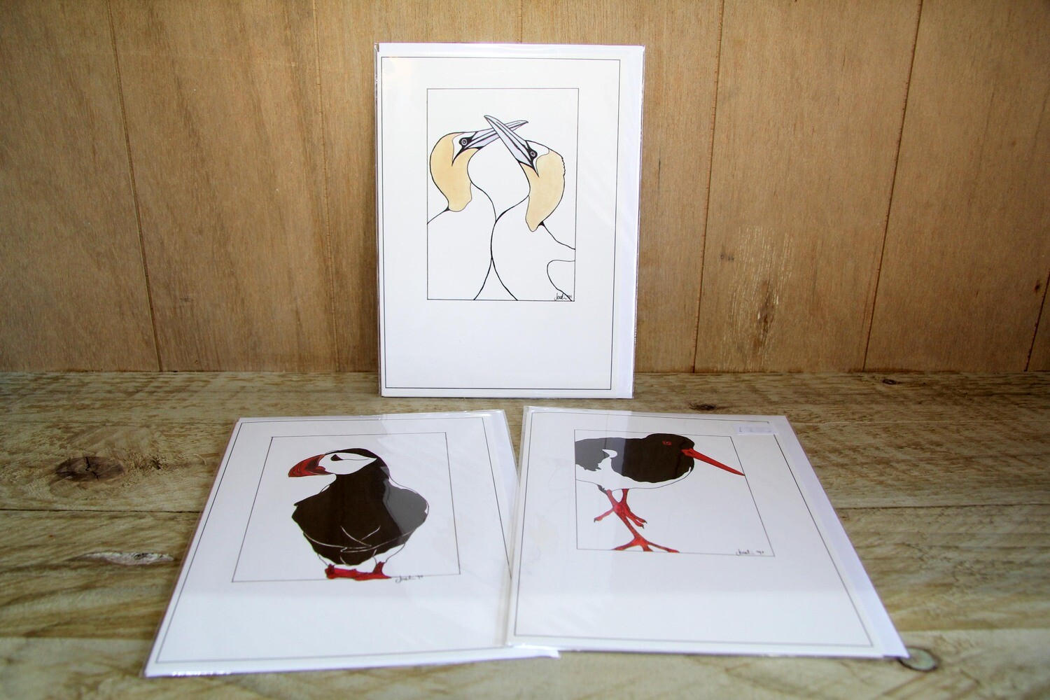Birds greeting cards - pack of 3