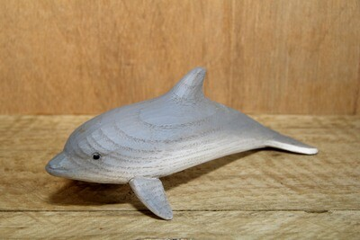 Dolphin - fins