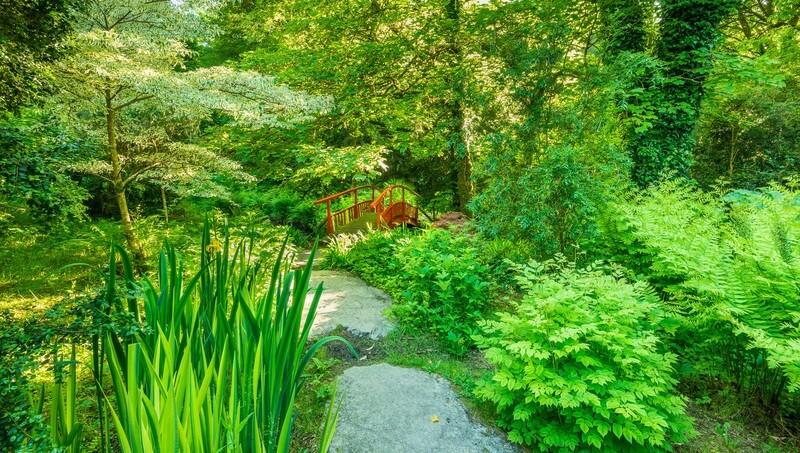 Bantry House Garden, West Cork.