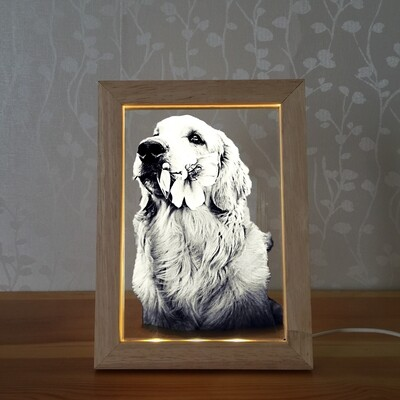 Led Picture Frame + 2D Glass Photo (Large)